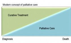 Palliative Therapy