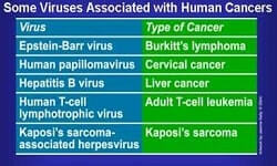 Viral Oncology